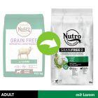 Nutro Grain Free Adult, jagnięcina