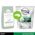 NUTRO Hund Adult 10-30 kg mit Lamm und Reis
