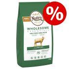 Nutro koiranruoka erikoishintaan: 20 % alennusta!