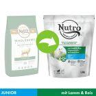 Nutro Puppy 10-30 kg Lam & Rijst Hondenvoer
