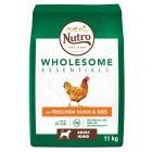 Nutro Wholesome Essentials Adult Dog Κοτόπουλο & Ρύζι