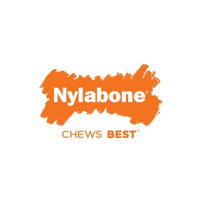 Nylabone DuraChew Monster Bone - Bison