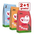 2 + 1 offert ! 3 x 400 g Croquettes Feringa