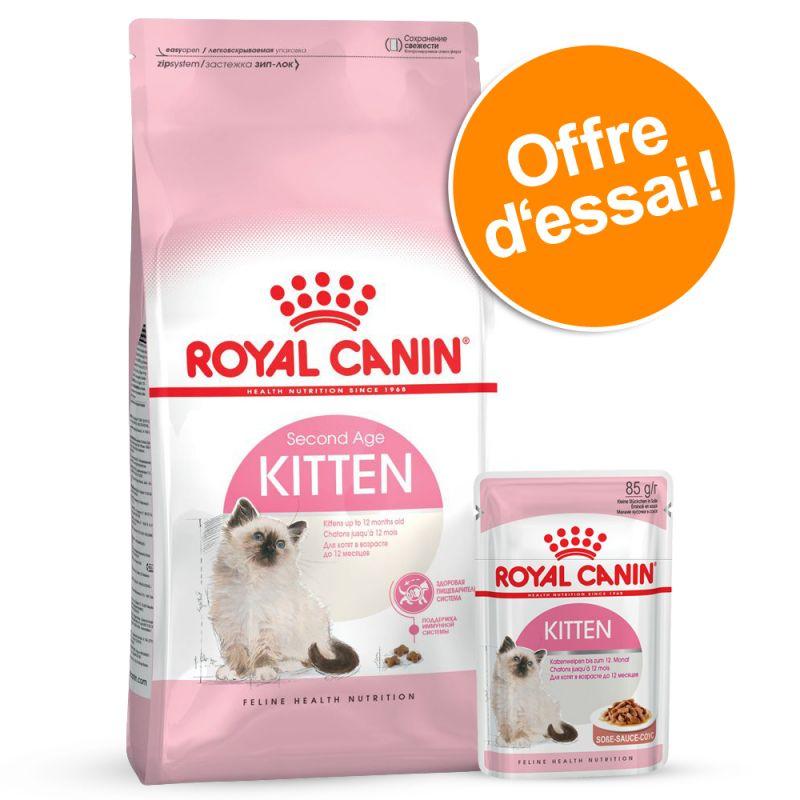 Offre découverte mixte Royal Canin Kitten pour chaton