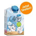 Offre d'essai ! Lait Catessy pour chat