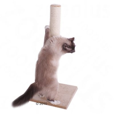 Olga Cat Scratching Post