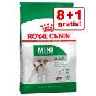 Op til 3 kg gratis! Royal Canin Size Adult i bonuspose