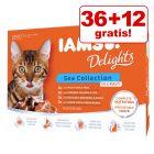 36 + 12 på kjøpet! 48 x 85 g IAMS Delights i gelé eller saus