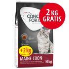 10 + 2 på köpet! Concept for Life kattfoder