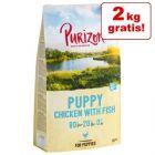 10 + 2 på köpet! Purizon Puppy Chicken & Fish - Grain Free