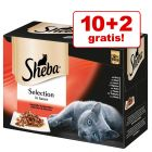 10 + 2 på köpet! 12 x 85 g Sheba Selection/Delicatesse