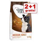 2 + 1 på köpet! 3 x 1,5 kg Concept for Life hundfoder