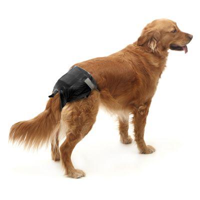 Pañales para perros Savic Comfort Nappy