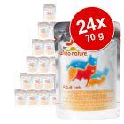 Pachet economic  Almo Nature Jelly 24 x 55 g
