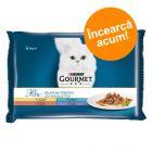 Pachet mixt de testare Gourmet 4 x 85 g
