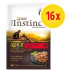 Pack ahorro True Instinct High Meat Fillets 16 x 70 g para gatos