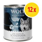 Pack ahorro Wolf of Wilderness The Taste Of 12 x 800 g