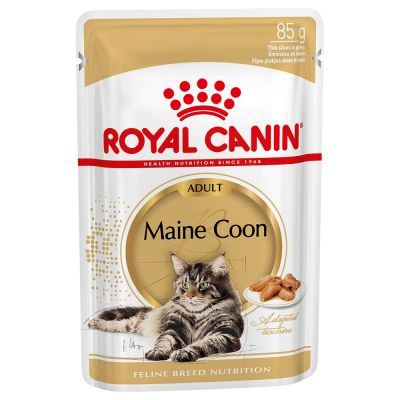 Pack bi-nutrition : croquettes + sachets Royal Canin
