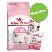 Pack bi-nutrition : croquettes + sachets Royal Canin Kitten