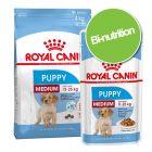 Pack bi-nutrition : croquettes + sachets Royal Canin Medium pour chien