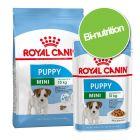 Pack bi-nutrition : croquettes + sachets Royal Canin Mini pour chien