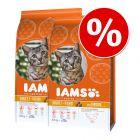 Pack económico: IAMS ração para gatos