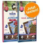 Pack gourmand bosch Junior 2 saveurs