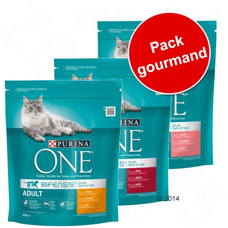 Pack gourmand PURINA ONE