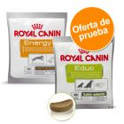 Pack mixto: Royal Canin snacks adiestramiento 2 x 50 g