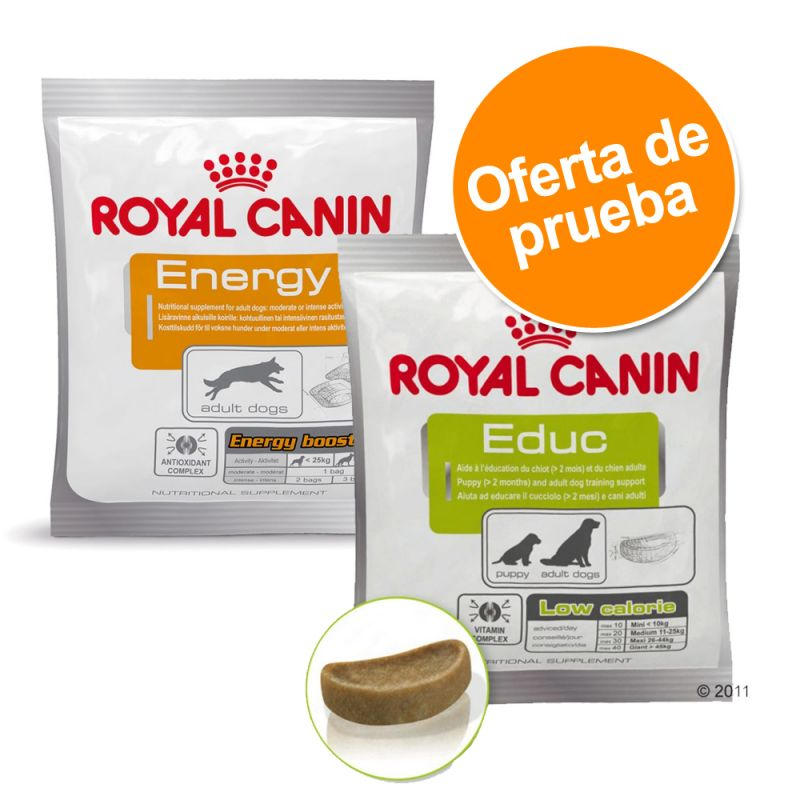 Pack mixto: Royal Canin snacks adiestramiento 2 x 50 g