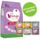 Pack nutrición mixta: pienso 2 kg + latas 6 x 200 g Feringa