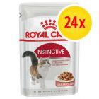 Pack % - Royal Canin sobres 24 x 85 g