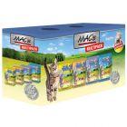 Pakiet mieszany MAC's Cat, 12 x 100 g