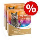 Pakiet mieszany My Star is an Adventurer, 16 x 85 g w super cenie!