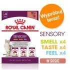 Pakiet próbny Royal Canin Sensory w sosie