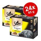 Pakiet Sheba Delicato, 24 x 85 g