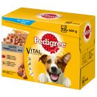 Pedigree Adult Menuboks i paté