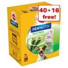 Pedigree Dentastix Fresh Dog Treats - 40 + 16 Free!*