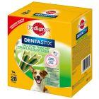 Pedigree Dentastix Fresh Tägliche Frische für kleine Hunde