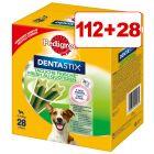 Pedigree Dentastix Oral Care / Fresh 112 + 28 kpl kaupan päälle!