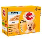 Pedigree Junior Multipack Φακελάκια Υγρή Τροφή για Σκύλους