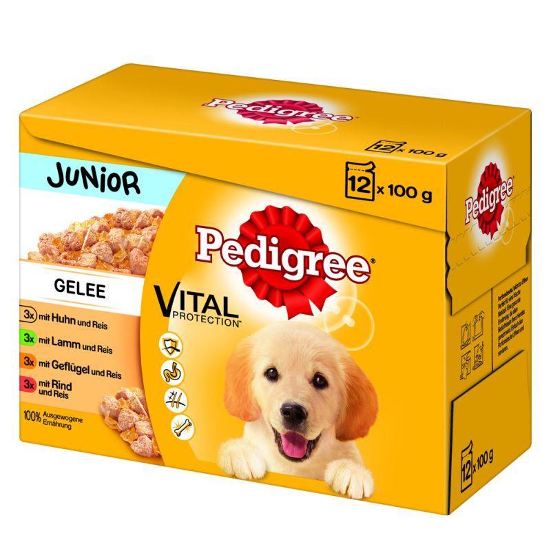 Pedigree Junior Pouch Multipack i gelé