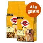Pedigree pienso para perros 2 x 13 / 2 x 15 kg ¡hasta 8 kg gratis!