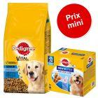 Pedigree Senior 8+, poulet 13 kg + 56 friandises Dentastix Daily Oral Care Maxi à prix mini !