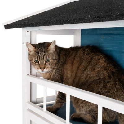 Penthouse Cat House