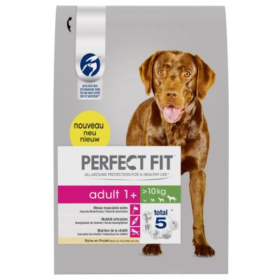 Perfect Fit Adult Hund (>10kg)
