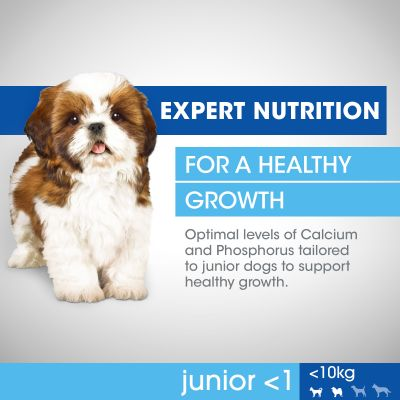 Perfect Fit Junior Small Dogs (<10kg)
