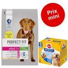 PERFECT FIT 6 kg + 56 friandises Dentastix Maxi à prix spécial !