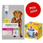 PERFECT FIT 6 kg + 56 friandises Dentastix Medium à prix spécial !