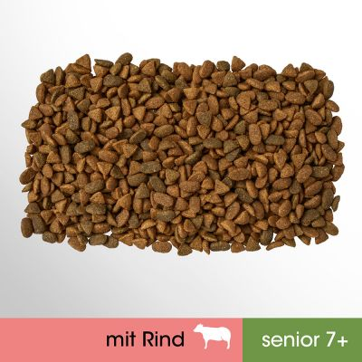 Perfect Fit Senior 7+ Reich an Rind